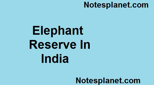 elephant reserve